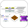 Enhanced Performance in Graphene Transistors via Interface Engineering