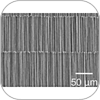 Wafer aligned carbon nanotubes