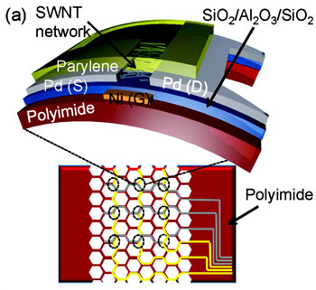 Semiconductor-enriched SWNT TFTs on flexible substrates. (a) Schematic of a mechanically flexible/stretchable active-matrix back-plane (64 cm2 with 128 pixel array) based on SWNT TFTs, and an expanded schematic of a single TFT.