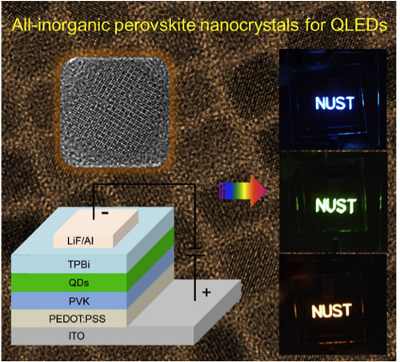 QLEDs based on all-inorganic perovskite cesium lead halide QDs. (Image: Institute of Optoelectronics & Nanomaterials, Nanjing University of Science and Technology)  Read more: All-inorganic perovskite quantum dot display breaks Cd-barrier