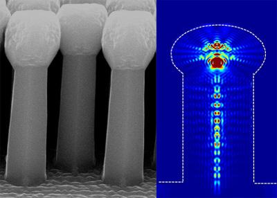 (Left) Silicon wires with match heads and (right) light absorption profile of a single match-head wire at 587 nm absorption. Image courtesy of the Center for Integrated Nanotechnologies