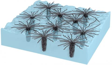 A new dry adhesive loses no traction in the cold and becomes stronger in extreme heat. Here's how: Bundled nodes of carbon nanotubes penetrate surface cavities and form web-like structures likely adding to the van der Waal's attraction. As the surface heats it becomes increasingly rough, and the bundles appear to penetrate deeper, becoming locked into place and further increasing the adhesion.