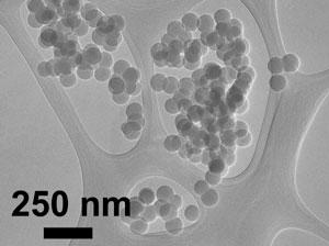 UA researcher and paper co-author Reyes Sierra used an electron microscope to acquire this image of silica nanoparticles.